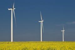 Giacimento della turbina di vento Immagini Stock
