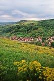 Giacimento di fiore sopra il villaggio Immagine Stock Libera da Diritti