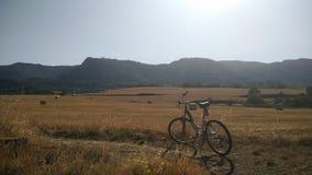 Giacimento di grano con una bici Fotografia Stock Libera da Diritti