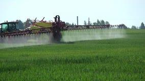 Giacimento di grano di spruzzatura del trattore con l'antiparassitario dell'insetticida del diserbante in primavera archivi video