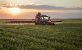 Giacimento di grano di spruzzatura dell'agricoltore Fotografie Stock Libere da Diritti