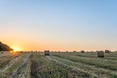 Giacimento di grano dopo il raccolto con la balla della paglia alla luce della lampadina bassa del sole di sera Fotografia Stock