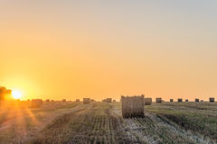 Giacimento di grano dopo il raccolto con la balla della paglia alla luce della lampadina bassa del sole di sera Immagini Stock Libere da Diritti