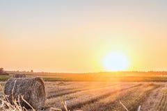 Giacimento di grano dopo il raccolto con la balla della paglia alla luce della lampadina bassa del sole di sera Il fieno rotola s Fotografia Stock