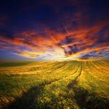 Giacimento di grano di estate con il percorso nel tempo variopinto di tramonto, Ungheria fotografie stock
