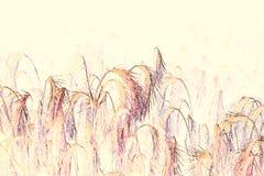 Giacimento di grano fatto con le tecniche dell'acquerello - illustrazione fotografia stock libera da diritti