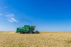 Giacimento di grano maturo giallo di raccolto meccanico di agricoltura della mietitrebbiatrice Fotografie Stock Libere da Diritti