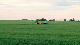 Giacimento di grano di spruzzatura dell'agricoltore con lo spruzzatore del trattore alla stagione primaverile archivi video