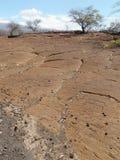 Giacimento di lava dell'Hawai con le sculture indigene Fotografie Stock Libere da Diritti
