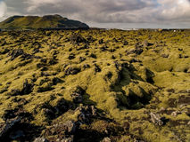 Giacimento di lava muscoso Fotografia Stock Libera da Diritti
