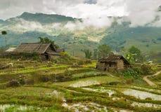 Giacimento e capanna del riso vietnam Immagine Stock Libera da Diritti