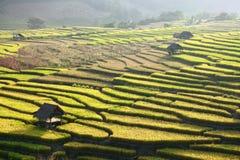 Giacimento e capanna a terrazze del riso sulla montagna Fotografie Stock