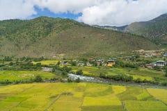 Giacimento e case del riso nel Bhutan Fotografia Stock Libera da Diritti