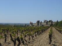 Giacimento e castello dell'uva Immagini Stock Libere da Diritti