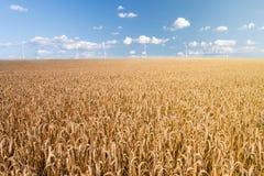 Giacimento e generatore eolico di grano Immagini Stock Libere da Diritti