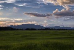 Giacimento e montagna del riso al tramonto nella provincia di Phayao, Tailandia Immagine Stock