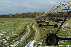 Giacimento irrigato dell'alfalfa immagine stock libera da diritti