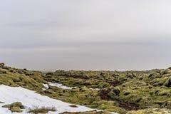 Giacimento solidificato del magma coperto in muschio in Islanda Fotografia Stock