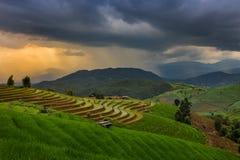 Giacimento a terrazze del riso in Chiangmai, Tailandia fotografie stock