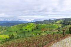 Giacimento a terrazze del riso con il fondo della montagna e della capanna, Chiang Mai in Tailandia, fondo della sfuocatura Fotografie Stock