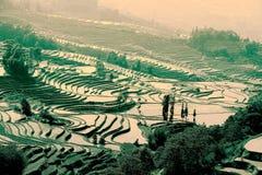Giacimento a terrazze del riso della gente etnica di Hani in Yuanyang, provincia di Yunnan, Cina Fotografia Stock Libera da Diritti