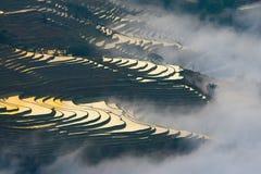 Giacimento a terrazze del riso (Yuanyang Hani) Fotografia Stock Libera da Diritti