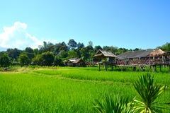 Giacimento verde del riso con la capanna di legno tailandese immagine stock libera da diritti