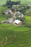 Giacimento verde del riso di agricoltura e riso a terrazze sulla montagna Immagini Stock Libere da Diritti