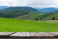 giacimento verde del riso sul terrazzo in valle della montagna Bella natura Immagini Stock Libere da Diritti