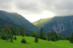 Giacimento verde della montagna Fotografie Stock