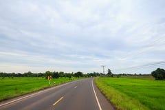 Giacimento vuoto del riso di verde della depressione del passaggio della strada Immagine Stock Libera da Diritti