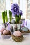 Giacinti ed uova di Pasqua viola sulla tabella Fotografie Stock