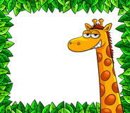Giaffe in the woods. Cartoon giraffe over a frame of leaves with blank space for text Stock Image
