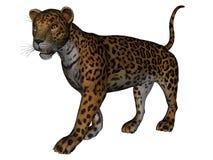 Giaguaro illustrazione di stock