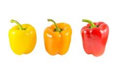 Giallo, arancia e peperoni Immagini Stock Libere da Diritti