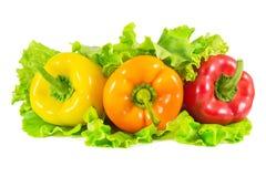 Giallo, arancia e peperoni sulle foglie dell'insalata Fotografie Stock Libere da Diritti