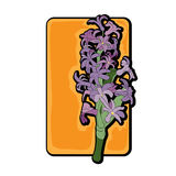 Giallo di clipart del giacinto Fotografie Stock Libere da Diritti