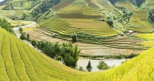 Giallo, inverdisca, viaggi, natura, il paesaggio, l'asiatico, l'etnia, rurale, il campo, la pianta, il paese, la valle, la montag Fotografia Stock Libera da Diritti