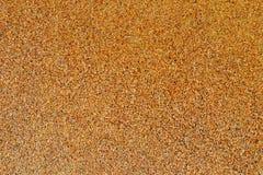 Giallo sabbia Immagine Stock Libera da Diritti