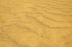 Giallo sabbia Fotografia Stock Libera da Diritti