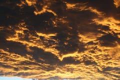 Giallo stupefacente dopo il cielo della pioggia Fotografia Stock