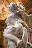 Gian Lorenzo Bernini-Meisterwerk, von Prosperina vom 1622 lizenzfreie stockfotos