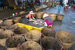 An Giang,越南- 2016年12月6日:与工作在TAC Cau捕鱼港口在黎明,我的工作者的被抓的鱼孔Kie三角洲省  免版税图库摄影