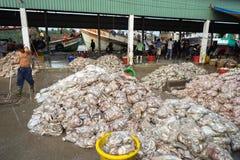 An Giang,越南- 2016年12月6日:与工作在TAC Cau捕鱼港口在黎明,我的工作者的被抓的鱼孔Kie三角洲省  库存照片