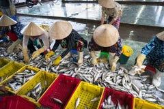 An Giang,越南- 2016年12月6日:与工作在TAC Cau捕鱼港口在黎明,我的越南妇女的被抓的鱼孔三角洲provin 库存照片