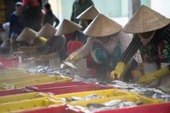 An Giang,越南- 2016年12月6日:与工作在TAC Cau捕鱼港口在黎明,我的越南妇女的被抓的鱼孔三角洲provin 库存图片