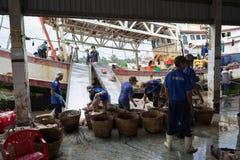 An Giang,越南- 2016年12月6日:工作在TAC Cau捕鱼港口在黎明,我的工作者孔Kien Giang三角洲省,在V南部 免版税库存照片