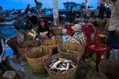 An Giang,越南- 2016年12月6日:被抓的鱼和工作活动在TAC Cau捕鱼港口在黎明,我孔K三角洲省  库存照片
