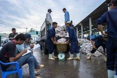 An Giang, Vietnam - 6. Dezember 2016: Fischen Sie Transporttätigkeit an Fischereihafen Tac Caus an der Dämmerung, ich Kong-Deltap Lizenzfreie Stockfotografie