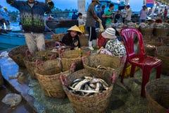 An Giang, Vietnam - 6 dicembre 2016: Pesci pescati ed attività di funzionamento nel porto di pesca di Tac Cau all'alba, me provin Fotografia Stock